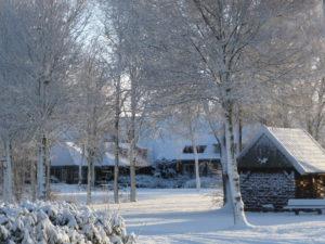holtweijde-winter-in-twente